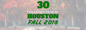 30 Fun Things To Do In Houston This Fall