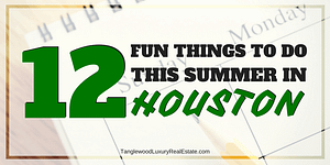 Things To Do In Houston This Summer