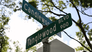 Tanglewood Blvd. in Houston, TX